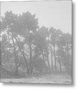Spring Snowstorm Metal Print
