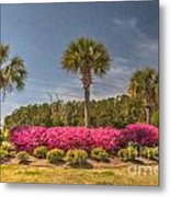 Spring Time In Charleston Metal Print