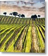 Spring Vineyard Metal Print