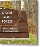 Sproul State Forest Metal Print