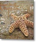 Starfish On Beach Metal Print