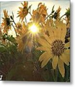 Sun Peaking Metal Print by Janet Moss