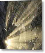 Sunbeam Metal Print