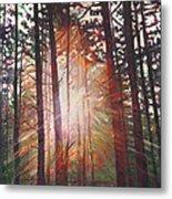 Sunburst Metal Print