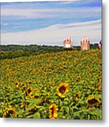 Sunflower Field New Jersey Metal Print