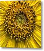 Sunflower In Oil Paint Metal Print