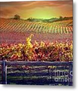 Sunrise Vineyard Metal Print