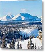 Taiga Winter Snow Landscape Yukon Territory Canada Metal Print