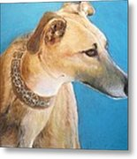 Tan Greyhound Metal Print