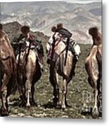 Working Camels Metal Print
