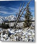 Tetons In The Distance Metal Print