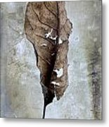 Textured Leaf Metal Print