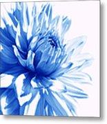 The Blue Dahlia Flower Metal Print
