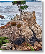 The Famous Lone Cypress Tree At Pebble Beach In Monterey California Metal Print