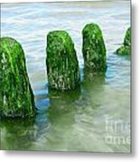 The Green Jetty Metal Print