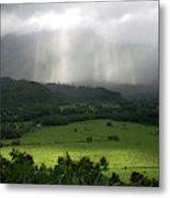 The Green Valley Surrounding Hanalei Metal Print
