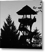 The Lonely Lookout Metal Print