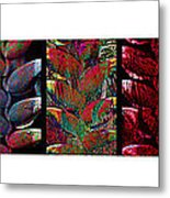 The Many Faces Of Heliconia  Metal Print
