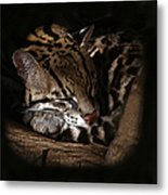 The Ocelot Metal Print
