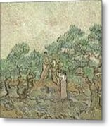 The Olive Orchard Metal Print