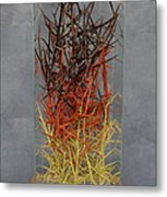 The Point Is Transition Metal Print by Lonnie C Tapia