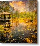 The Wetlands Metal Print