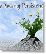 The Power Of Persistence Metal Print