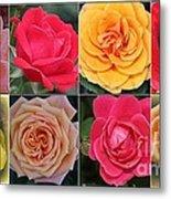 Spring Time Roses Metal Print