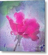 The Scent Of Roses Metal Print