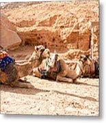 Three Camels Metal Print