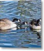 Three's A Crowd Metal Print