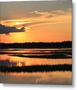 Tidal Marsh Wilmington Nc Metal Print