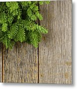 Tree Branch On Rustic Wooden Background Used For Christmas Decor Metal Print