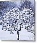 Tree Frosting Metal Print