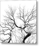 Tree Impression #11 Metal Print
