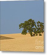 Tree In Field Metal Print