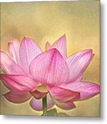 Tropical Lotus Flower Metal Print