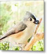 Tufted Titmouse With Seed - Digital Paint Metal Print