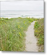 Usa, Massachusetts, Nantucket Island Metal Print