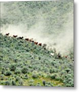 Usa, Washington, Malaga, Running Horses Metal Print