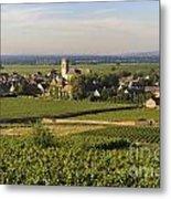 Vineyard And Village Of Pommard. Cote D'or. Route Des Grands Crus. Burgundy. France. Europe Metal Print by Bernard Jaubert