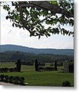 Vineyards In Va - 12124 Metal Print