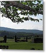 Vineyards In Va - 12125 Metal Print