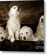 Vintage Festive Puppies Metal Print