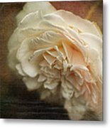 Vintage Tea Rose Metal Print