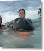 Volunteer With Stranded Pygmy Killerwhale Metal Print