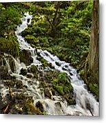 Wahkeena Creek Metal Print