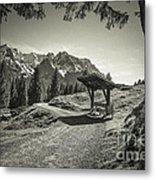 walking in the Alps - bw Metal Print