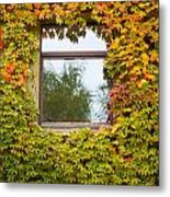 Wall Overgrown With Fall Colored Vine And Ivy Metal Print