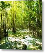 Waterfall In Rainforest Metal Print